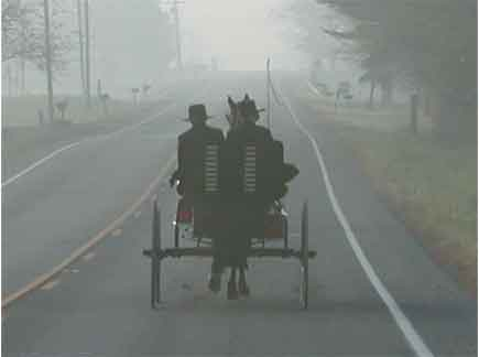 Amish Buggy on Foggy Ohio Road
